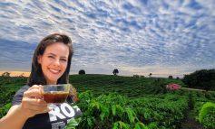 Rondônia supera expectativa e tem produção recorde de café na safra 2020