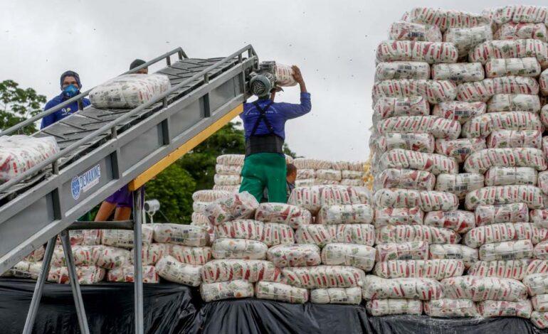 Rondônia tem aumento de 5,2% com um valor de mais de R$ 7 bilhões na exportação agropecuária em 2020