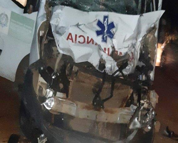 Vacas soltas na pista provocam grave acidente com ambulância