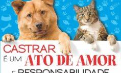 Trailer vai fazer consultas e castrações em animais de famílias carentes de Ji-Paraná