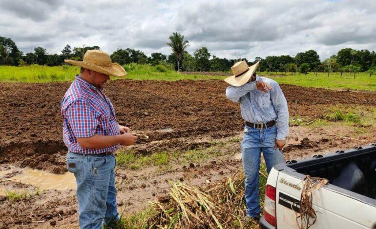Redução na base de cálculo e isenção do ICMS permite ao produtor de Rondônia planejar melhor as atividades agrícolas